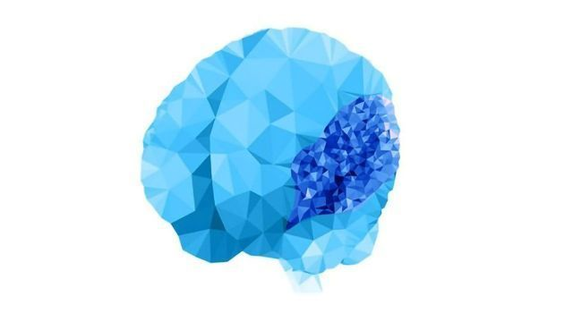 """""""Overfolded Brain"""" Condition Has Genetic Roots Revealed"""