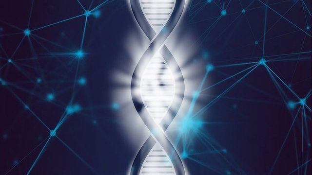Discrepancies in the Reference Human Genomes Are Identified