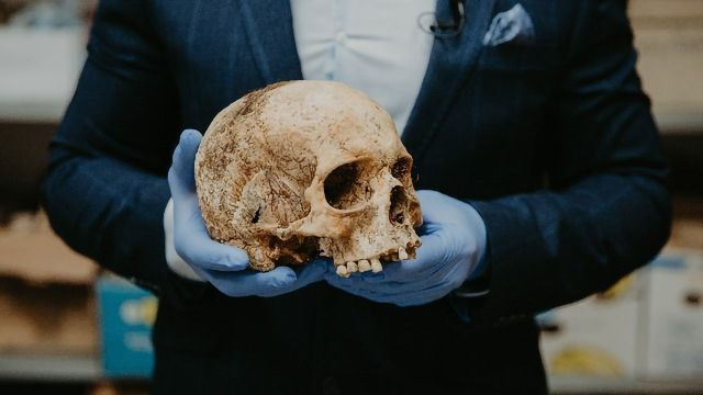 What a Decade of Ancient DNA Analysis Has Taught Us