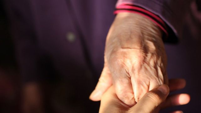 Monoclonal Antibody Drugs Fail To Improve Alzheimer's Disease Symptoms