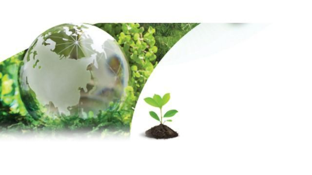 Dioxin and Persistent Organic Pollutants Analysis