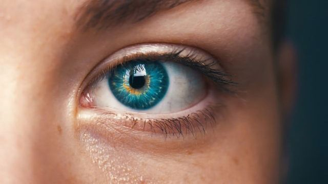 Melanoma of the Eye: Preclinical Research Factors to Potential Remedy