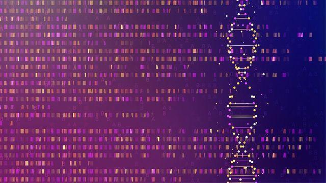 Bypassing Genetic Bottlenecks With the CRISPR-SNP-Chip