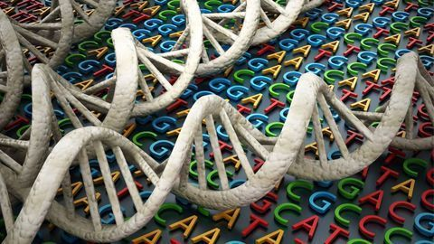 How To Optimize Next-Generation Sequencing Workflows