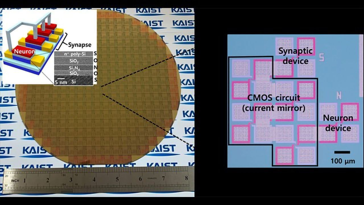 Neuromorphic Hardware Puts Neurons and Synapses on a Chip