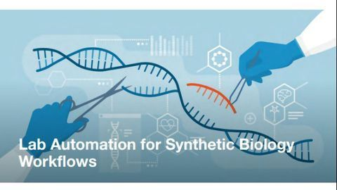 Lab Automation for Synthetic Biology Workflows