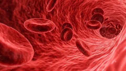 3D-Bioprinted Blood Vessel Developed