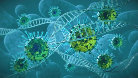 Viral Genetics and Immune Evasion: Implications for Vaccine Development