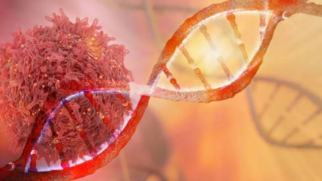 Validation Guidance for Residual Host Cell DNA Testing