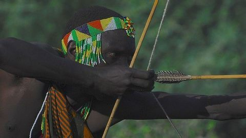 Hunter-Gatherer Population Sizes Restricted by Meat-Heavy Diet