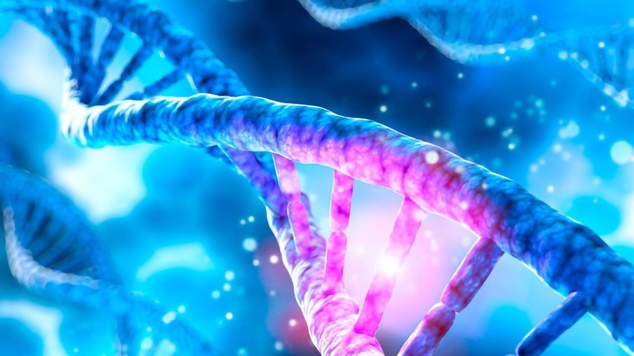 Researchers Unravel the Inner Workings of DNA Repair Enzymes