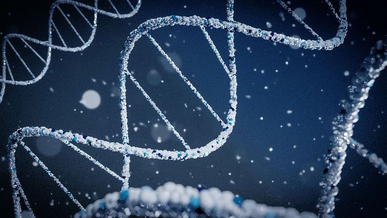New Tool Could Provide Early Warning of Rare and Unknown Viruses