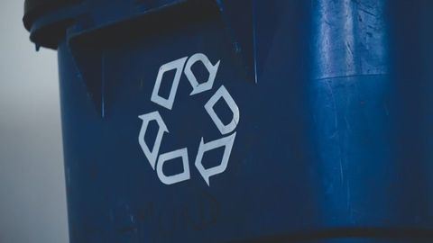Easing the Future of Plastic Waste Chemical Recycling