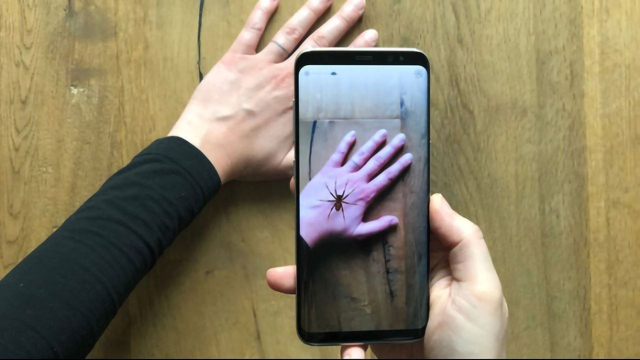Afraid of Spiders? This Augmented Reality App May Help