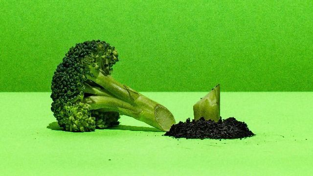 Hate Broccoli? Your Oral Microbiome Might Be the Reason