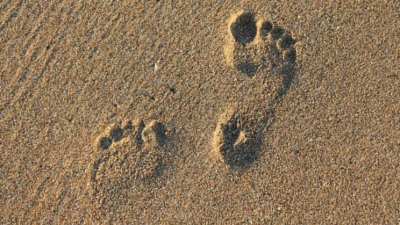 Fossilized Footprints Provide Earliest Evidence of Humans in the Americas
