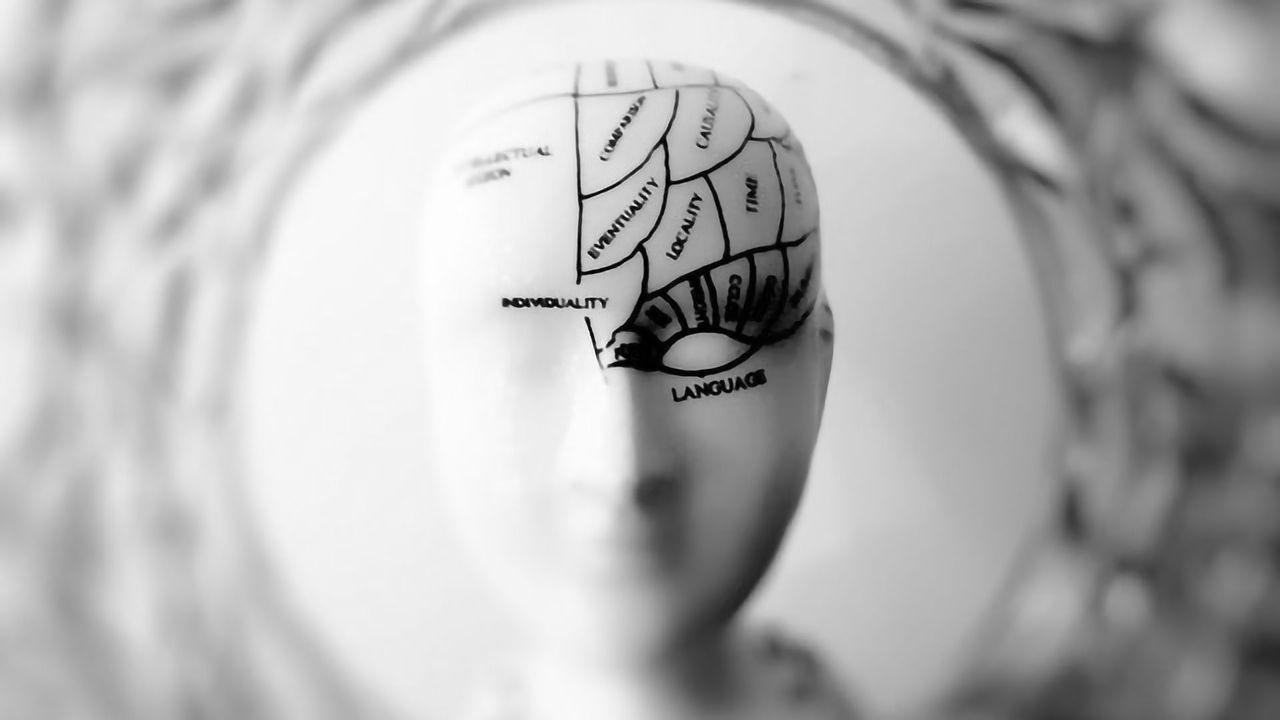 Recurrent Neural Network Explains the Power of the Frontal Cortex