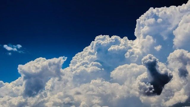 Aerosols Formed From Plant-Emitted Compounds Can Make Clouds Brighter