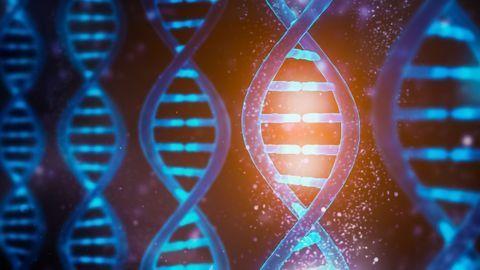CRISPR Gene Therapies: Assessing the Success of Gene Edits Using ddPCR