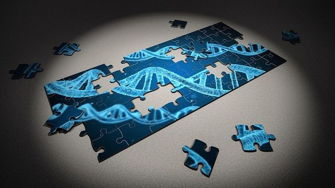 Scripps Scientists Are One Step Closer to Expanding the Genetic Code