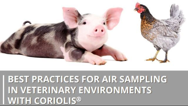 Best Practices for Air Sampling in Veterinary Environments