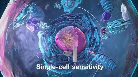 Single-Cell Proteomics