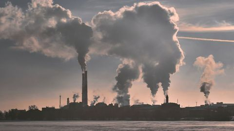 Clean Air Can Make All the Difference for Brain Health