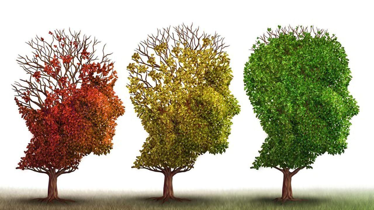 Investigational Alzheimer's Drug CMS121 Begins Phase I Clinical Testing
