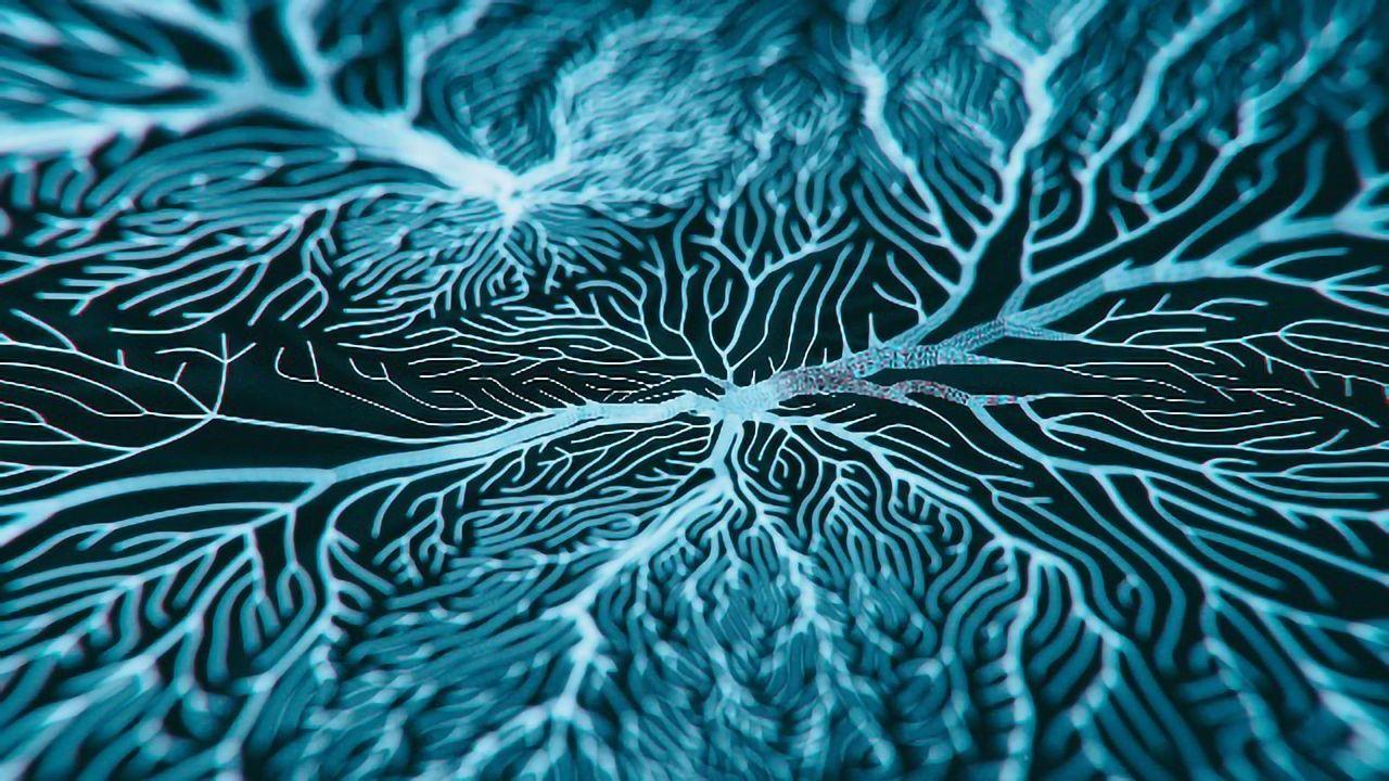 A New Technique To Enhance Anti-Stroke Protein Neurolysin