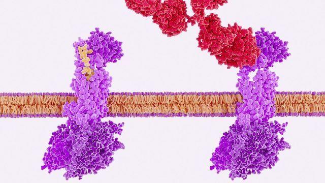 Binding Kinetics in Drug Discovery