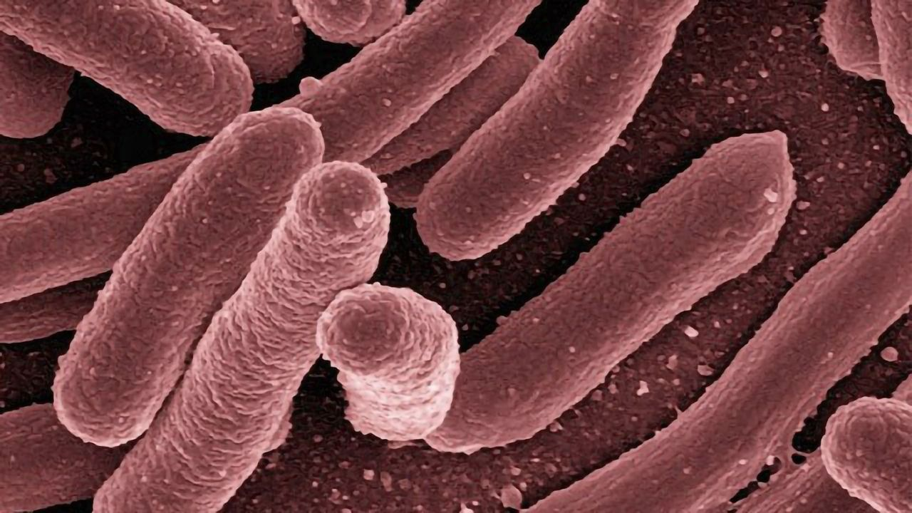 Improving Treatments for Tuberculosis