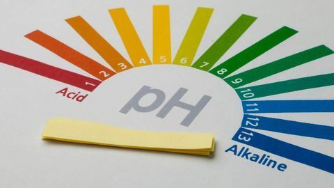 Psychiatric Disorders: What Role Might Brain pH Play?
