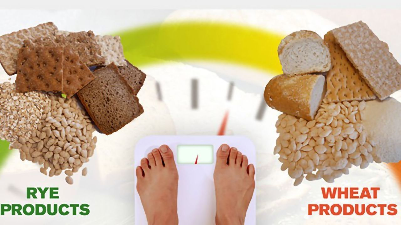 Swapping From Wheat to Rye Can Aid Weight Loss