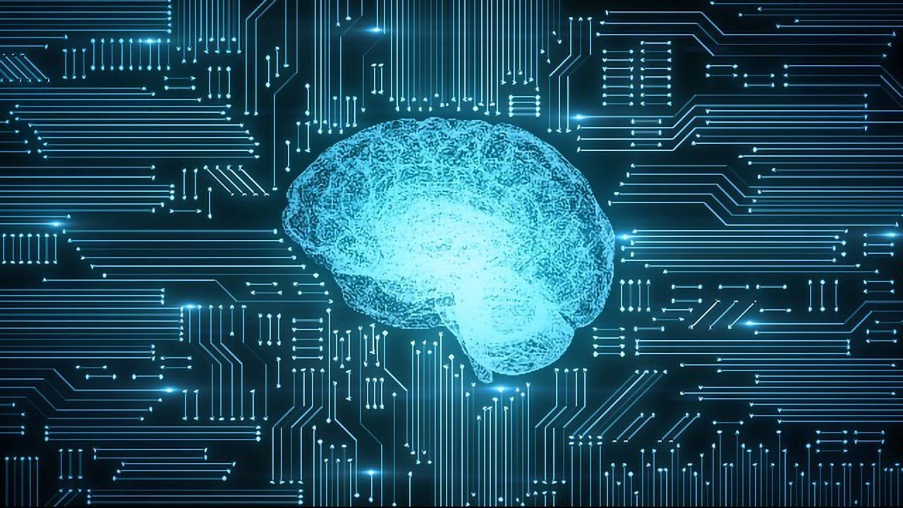 Does the Brain Learn Like a Computer Learns?
