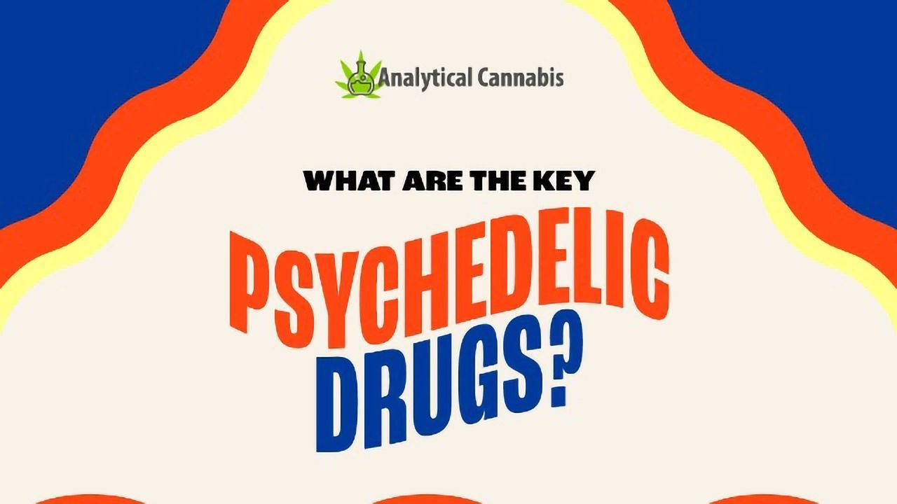 What Are the Key Psychedelic Drugs?
