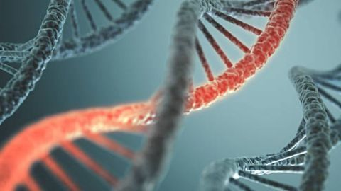 Accelerating mRNA-Based Therapy Development