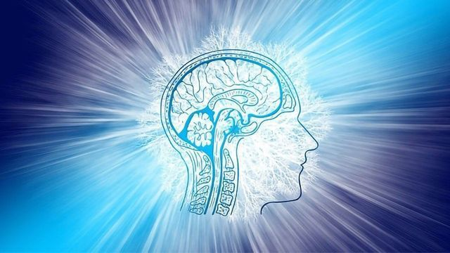 Cleaning the Brain After Stroke