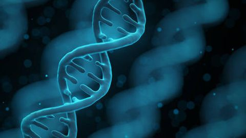 Transforming Drug Discovery With Single-Cell CRISPR Screens